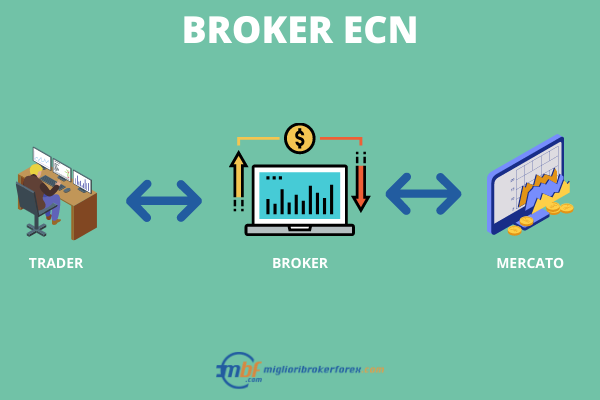 broker ECN forex - Infografica a cura di Miglioribrokerforex.com