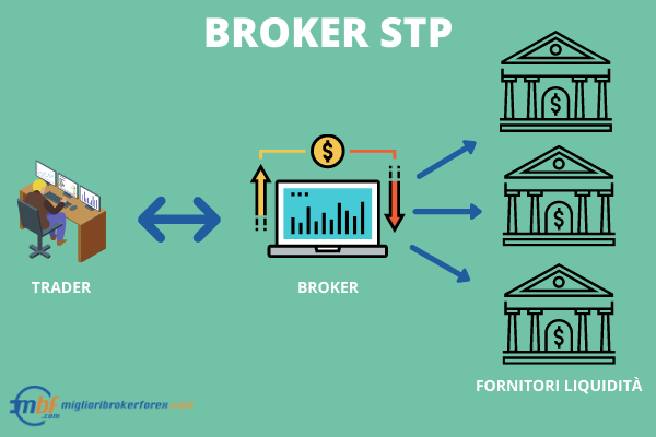 Broker Forex STP -  Infografica a cura di Miglioribrokerforex.com